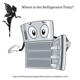 Where is the Refrigerator Fairy-